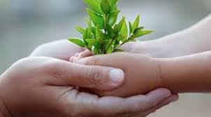 Sustainability in the childcare setting